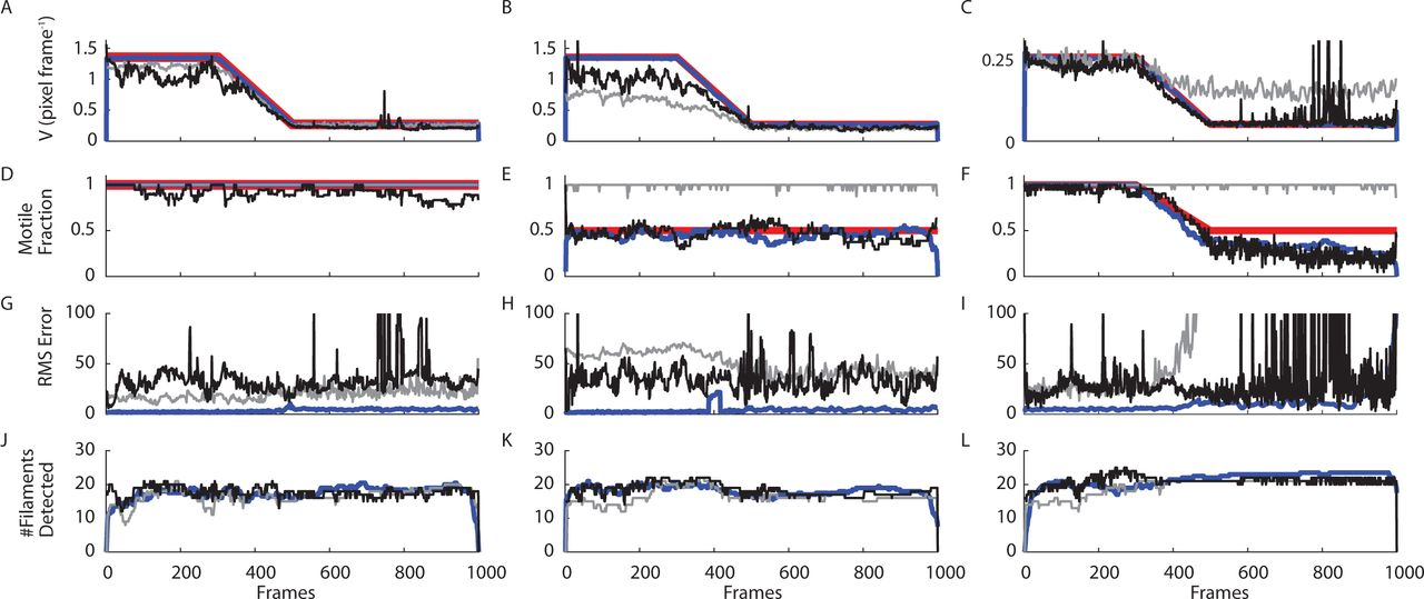 Rapid Time-stamped Analysis of Filament Motility | bioRxiv