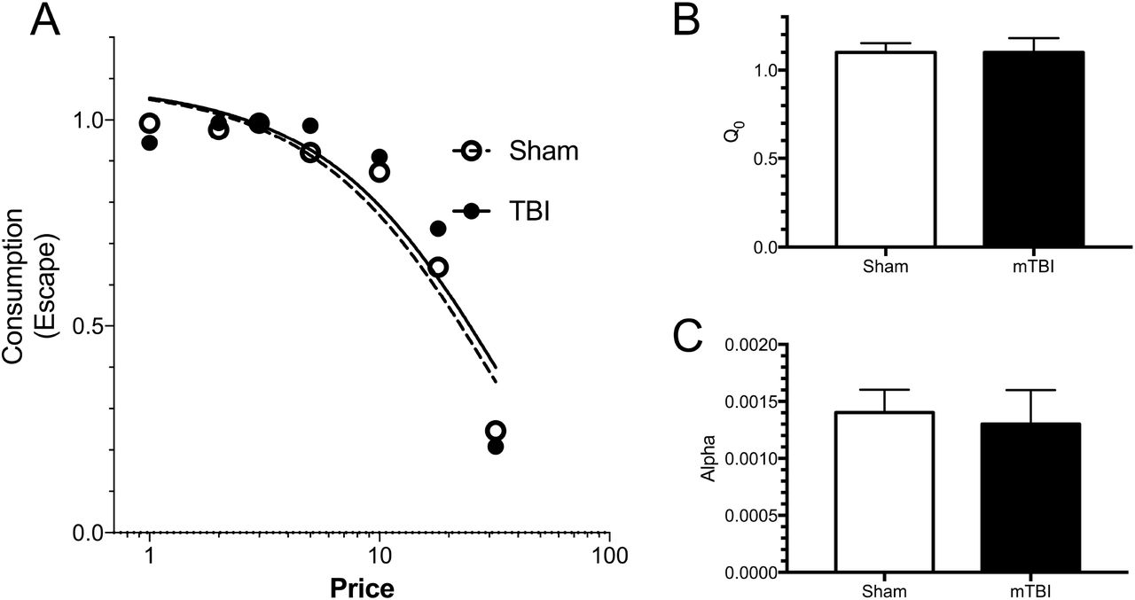 Anhedonia following mild traumatic brain injury in rats: A