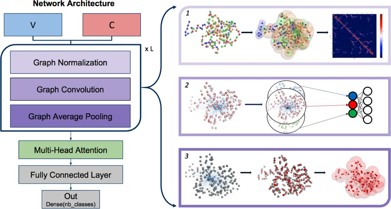 Structural Learning of Proteins Using Graph Convolutional