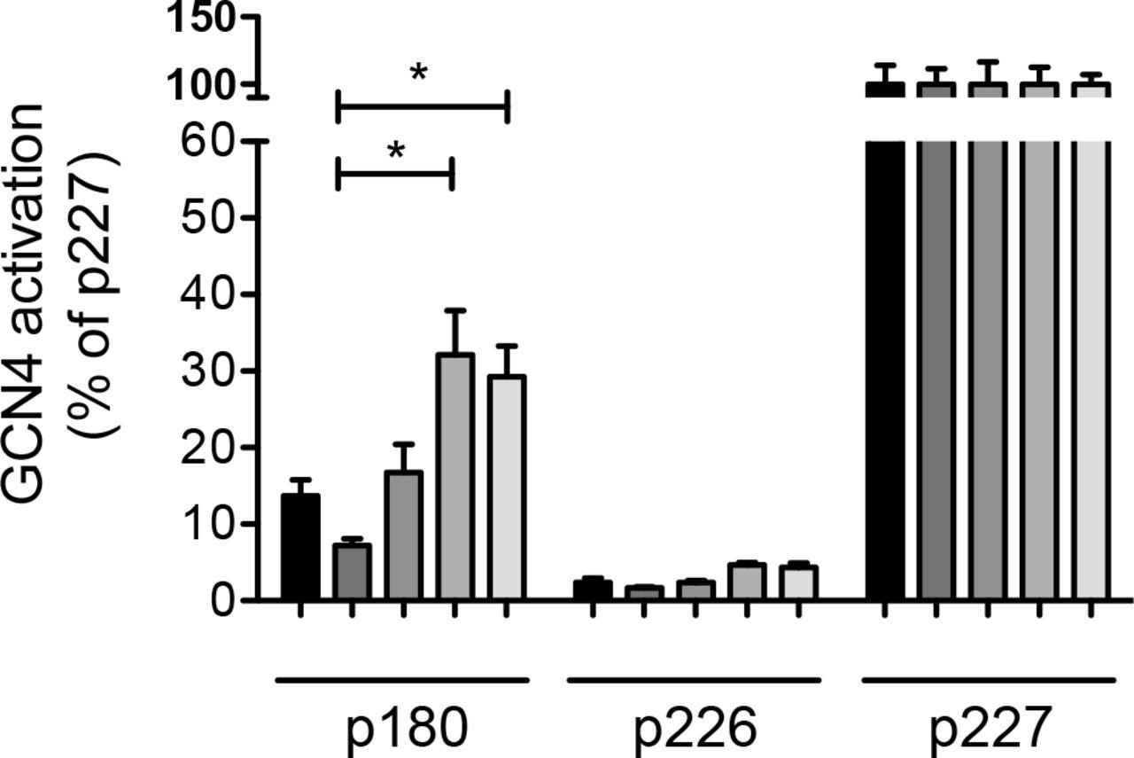 The molecular aetiology of tRNA synthetase depletion