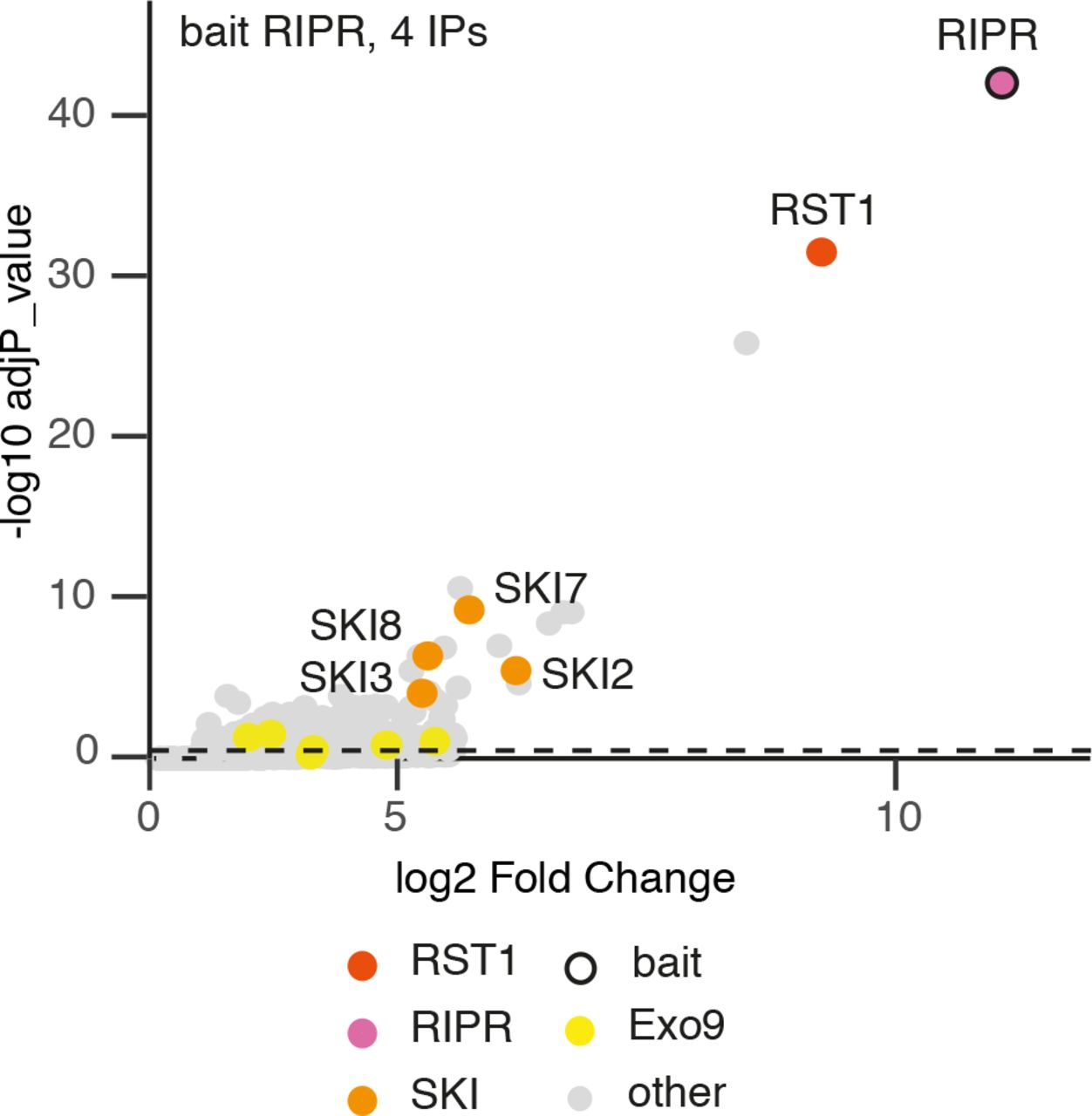 RST1 and RIPR connect the cytosolic RNA exosome to the Ski