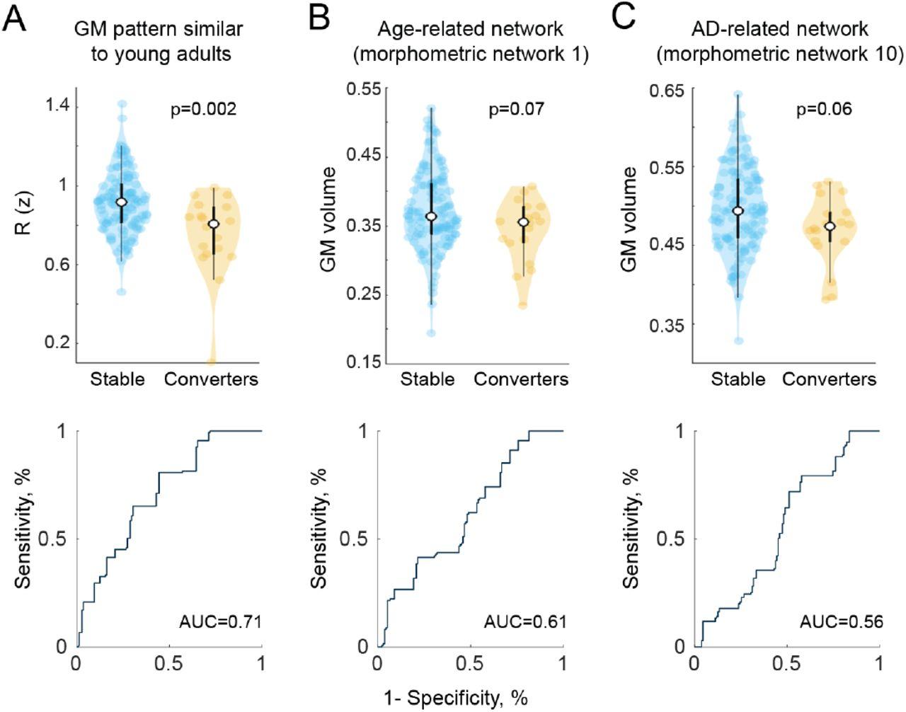 Distinct changes in morphometric networks in aging versus