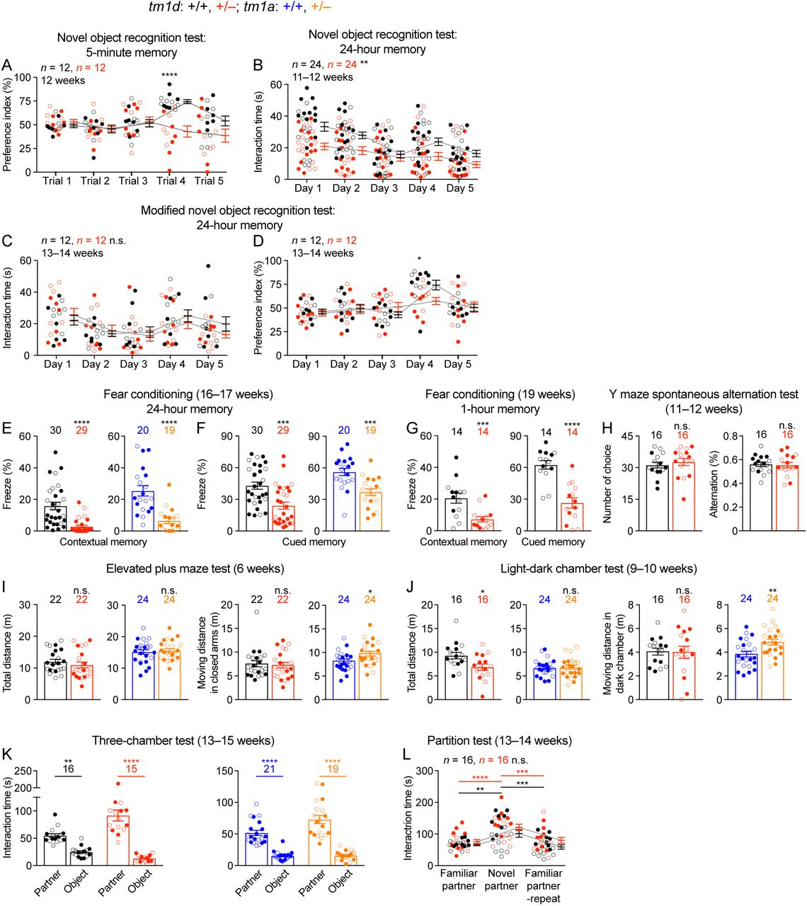 Stxbp1/Munc18-1 haploinsufficiency in mice recapitulates key