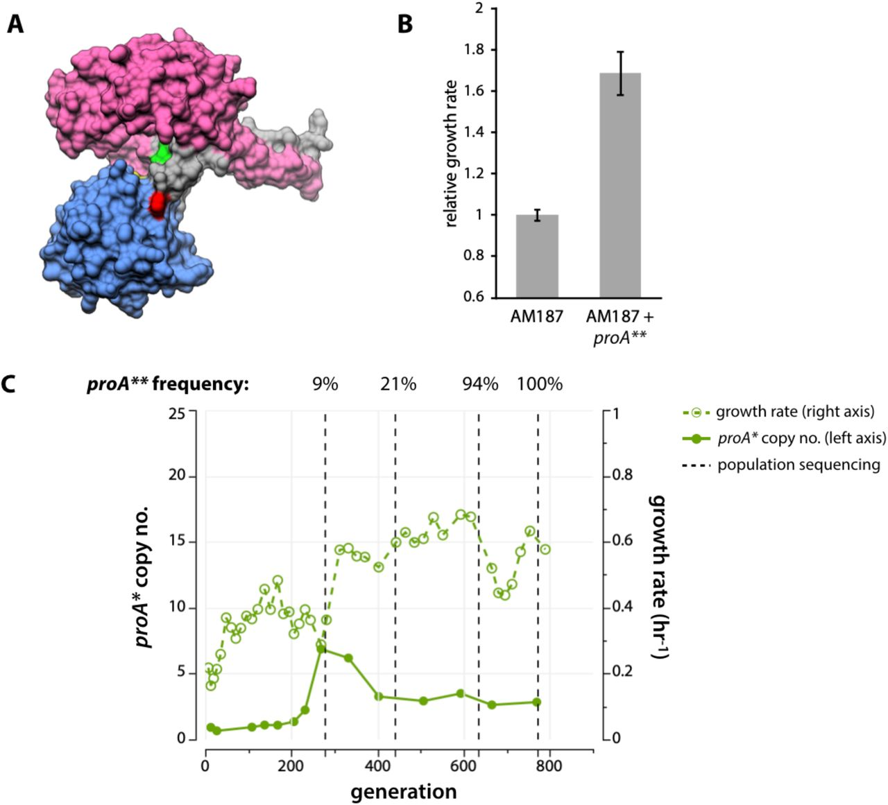 Mutations that improve the efficiency of a weak-link enzyme
