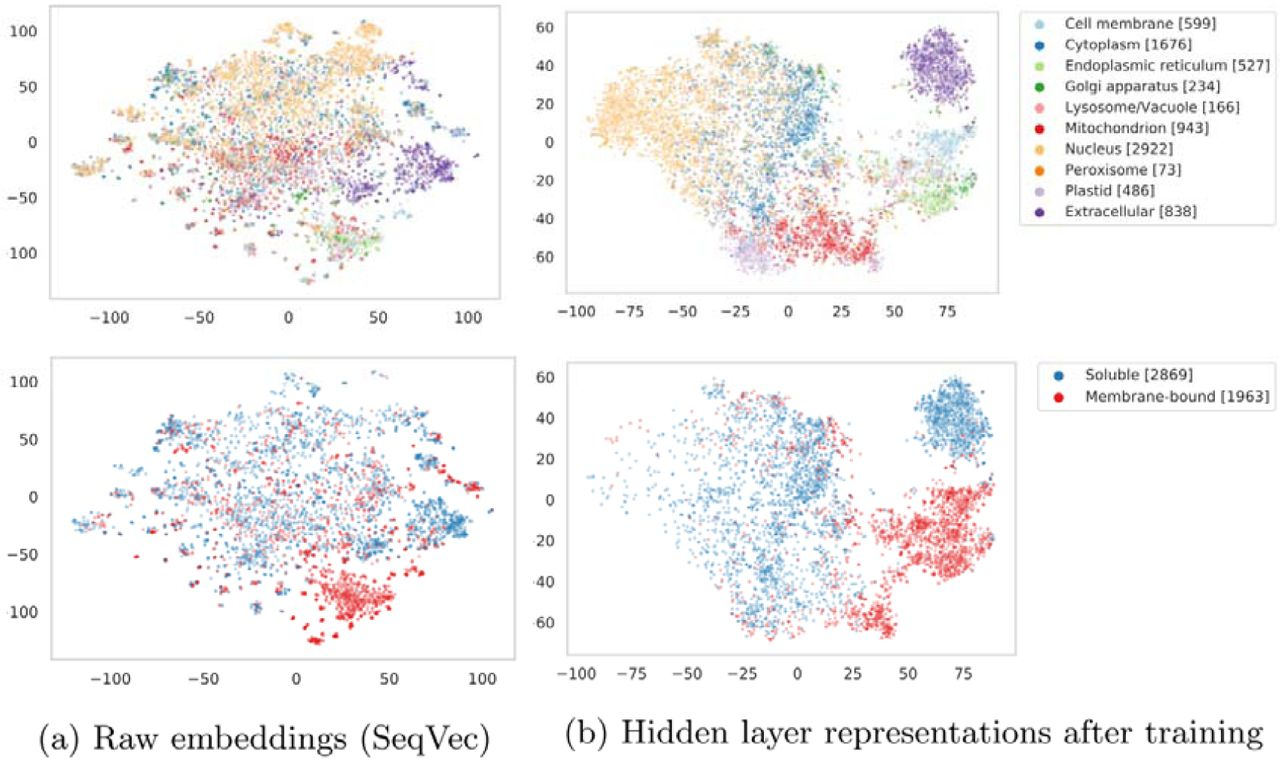 Modeling the Language of Life – Deep Learning Protein Sequences