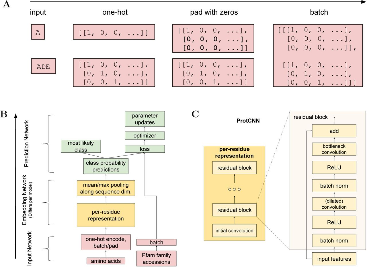 Using Deep Learning to Annotate the Protein Universe | bioRxiv