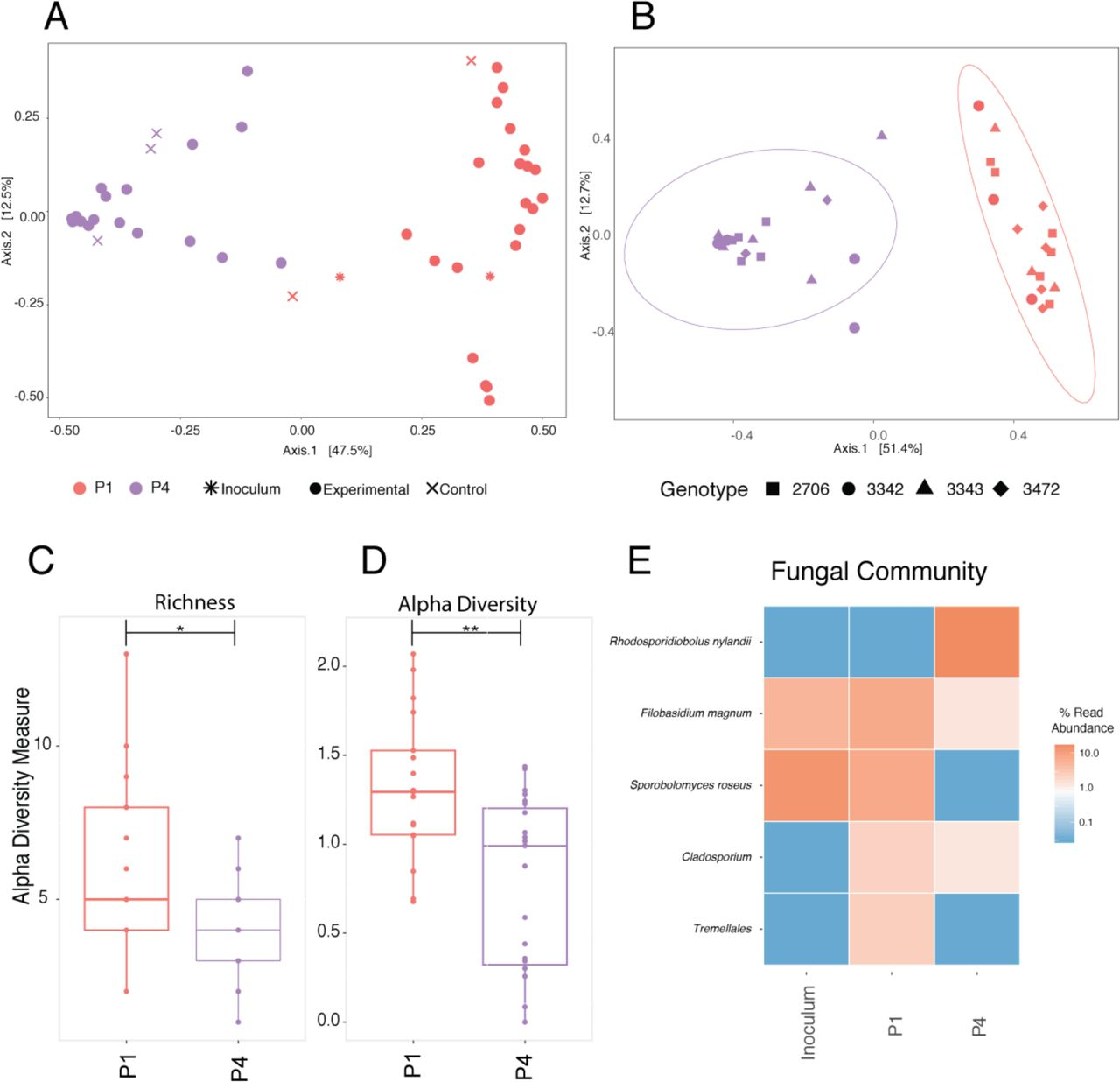 Successive passaging of a plant-associated microbiome reveals robust