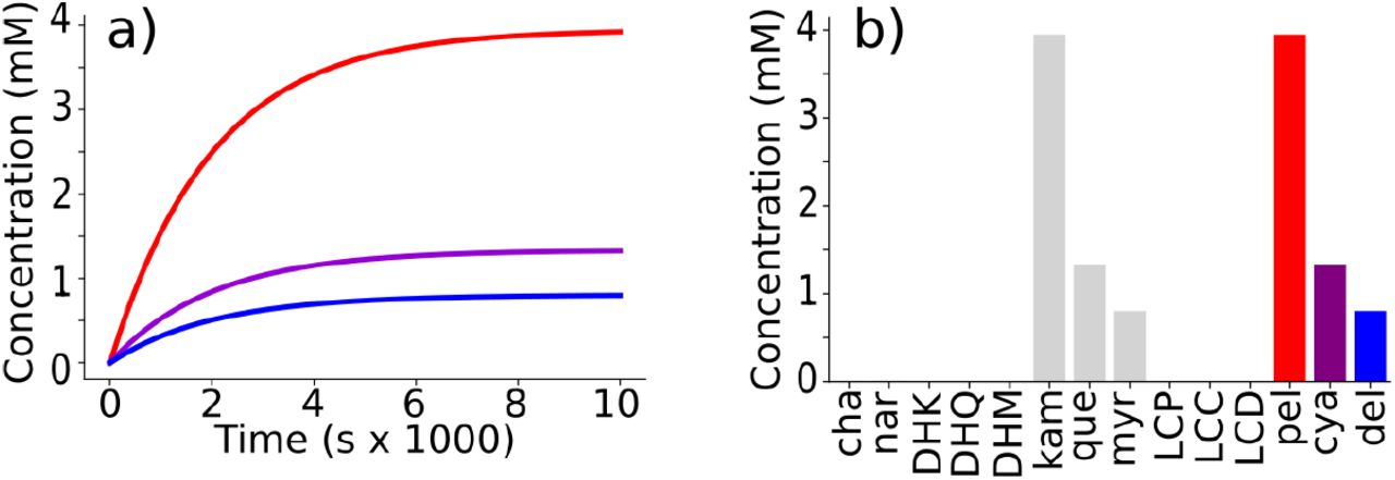 Computational modeling of anthocyanin pathway evolution: Biases
