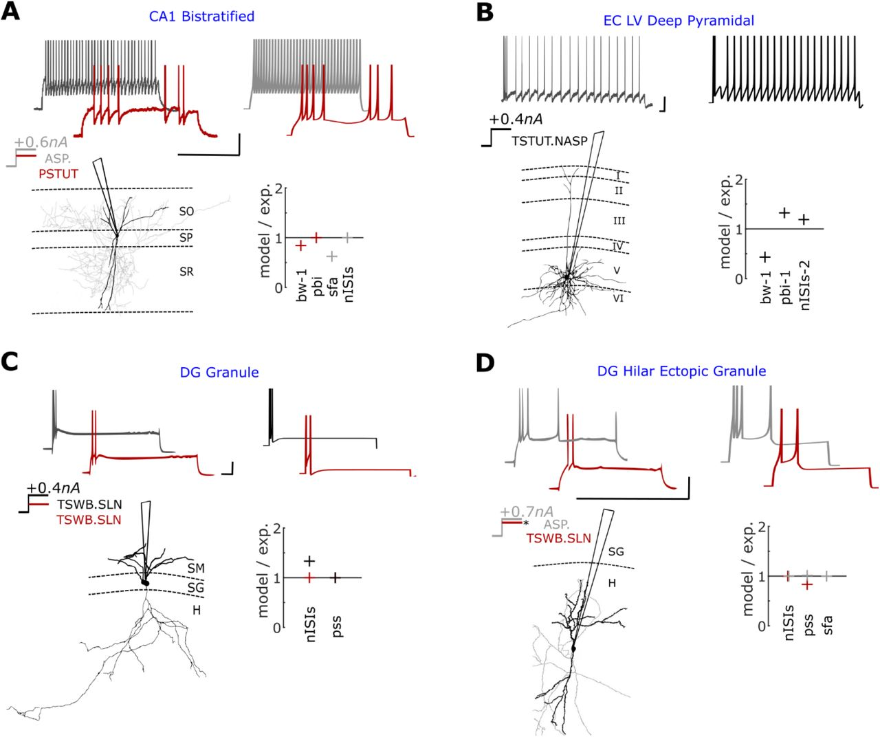 Simple models of quantitative firing phenotypes in hippocampal