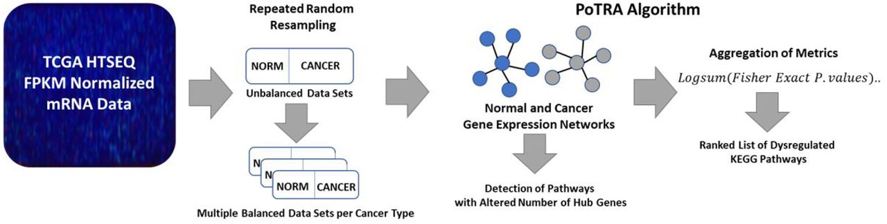 Pan-Cancer Exploration of mRNA Mediated Dysregulated
