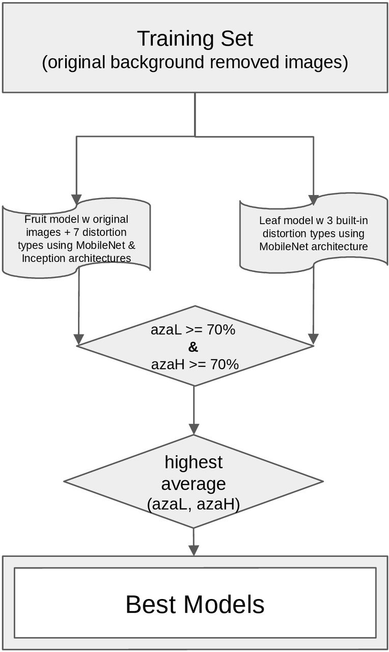 Prediction of a plant intracellular metabolite content class using