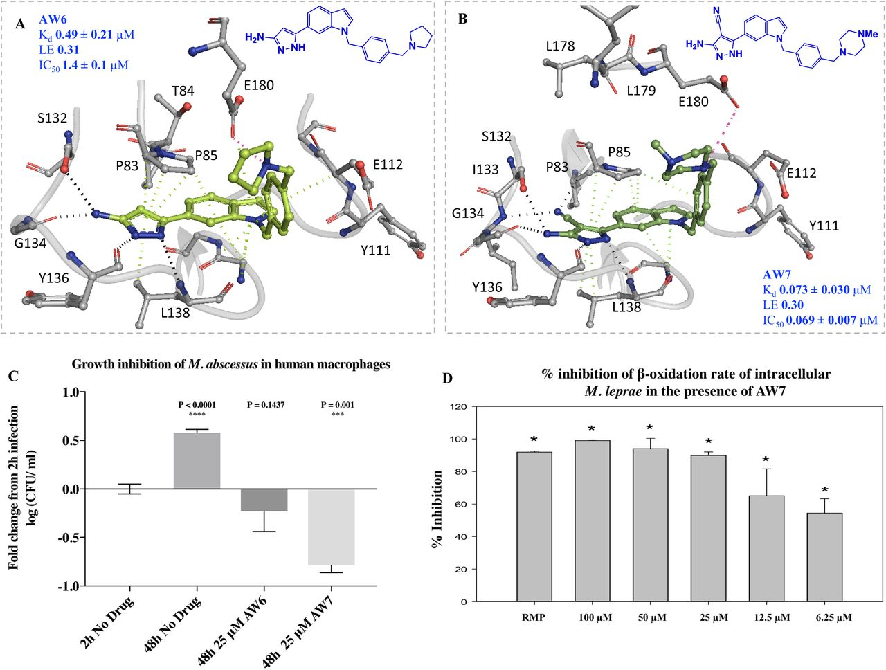Fragment-based discovery of a new class of inhibitors targeting