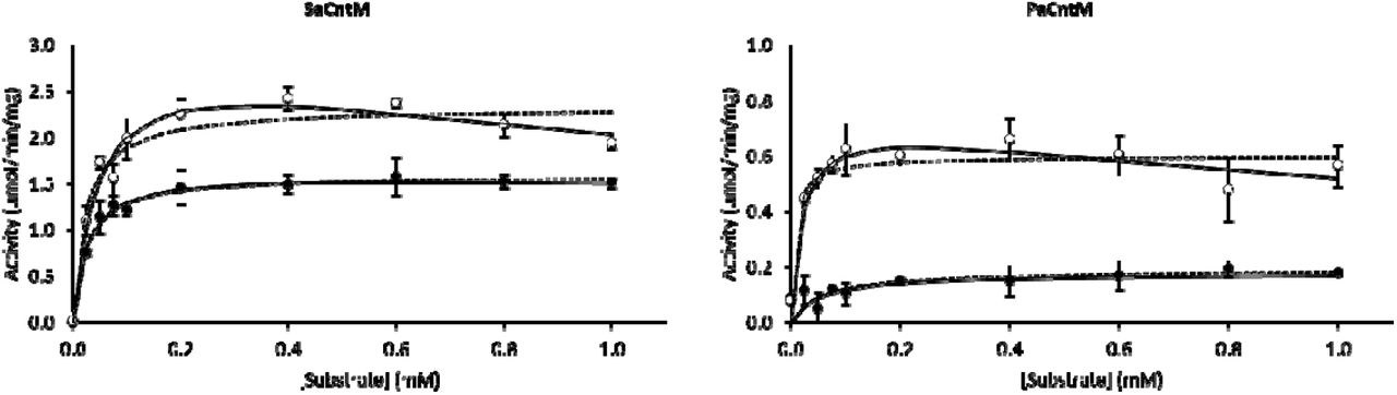Activity profile of SaCntM and PaCntM using variable concentrations of xNA (black circle) and yNA (white circle) with fixed concentrations of other substrates: 0.2 mM of NADPH and 1 mM of pyruvate when evaluating SaCntM, or 0.2 mM of NADH and 1 mM of α-ketoglutarate when evaluating PaCntM. The data points are means of three replicates with standard deviations. The fits are made using the Michaelis-Menten model considering (continuous line) or not (dashed line) a substrate inhibition.
