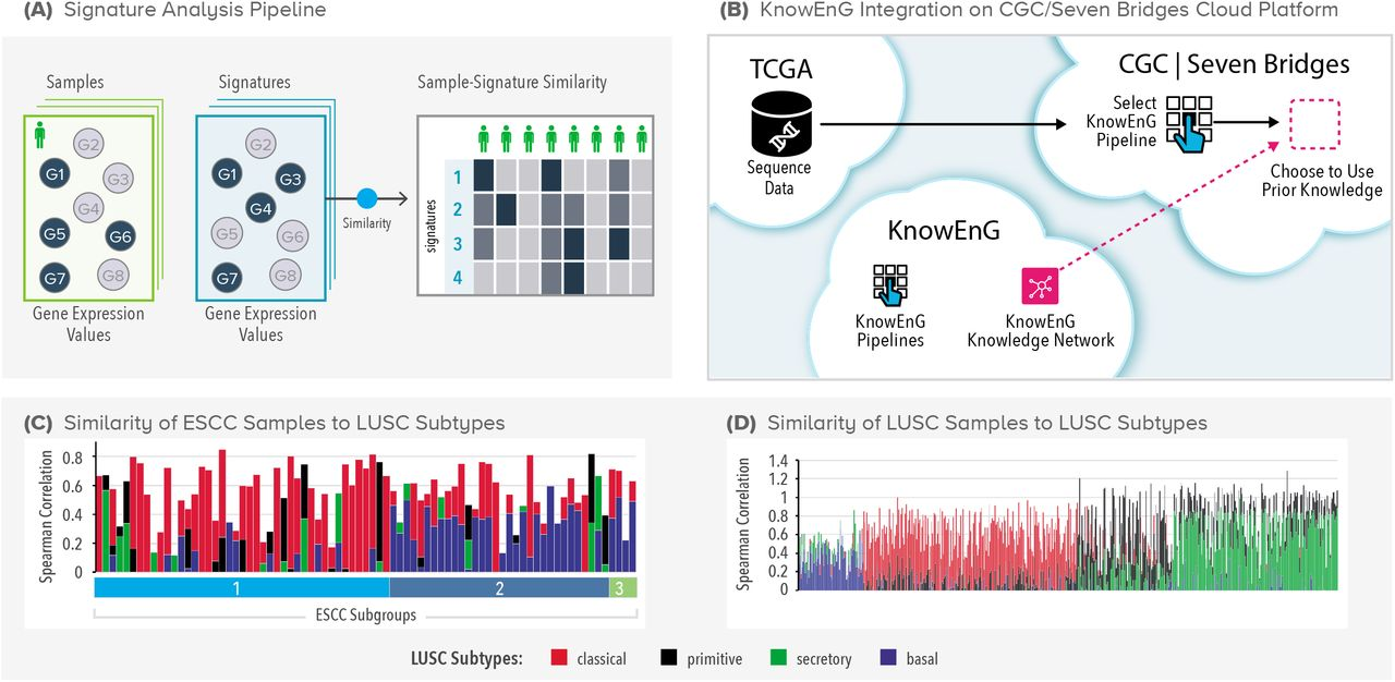 Knowledge-guided analysis of 'omics' data using the KnowEnG