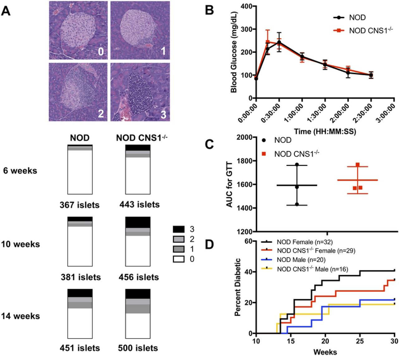Thymically-derived Foxp3+ regulatory T cells are the primary