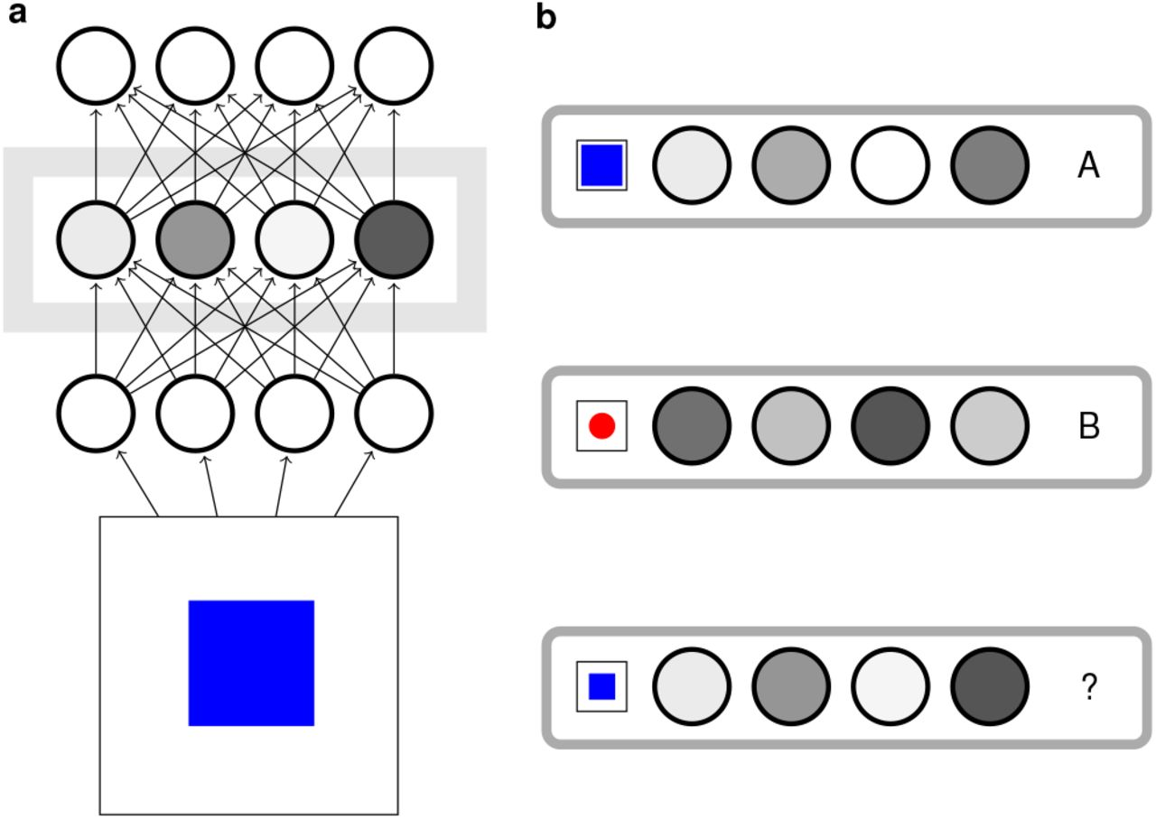 Levels of Representation in a Deep Learning Model of Categorization