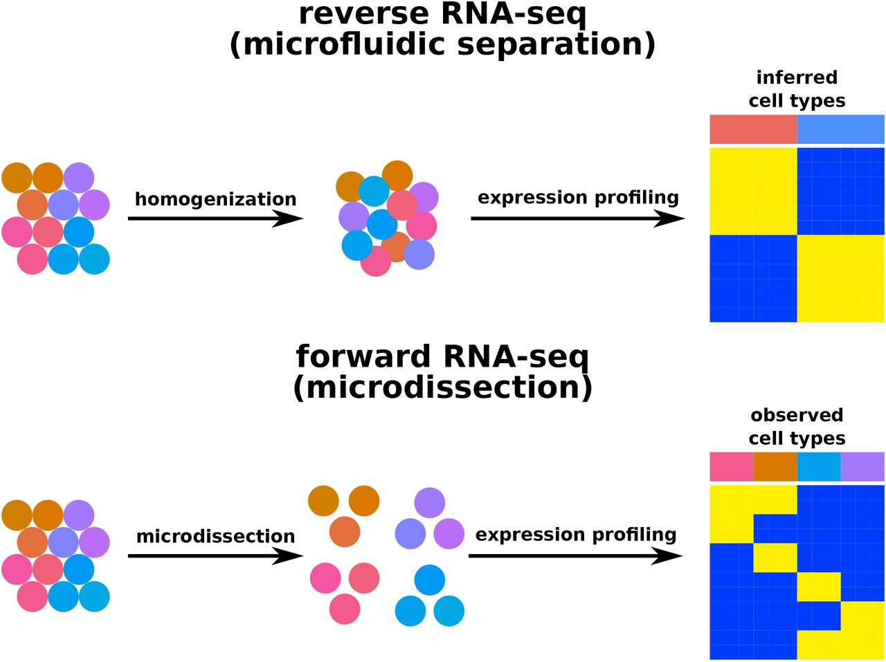Gene-expression profiling of single cells from archival