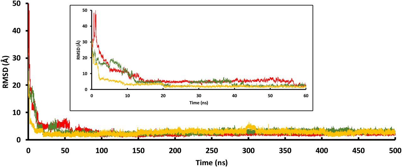 Ultraefficient Unbiased Molecular Dynamics simulation of protein