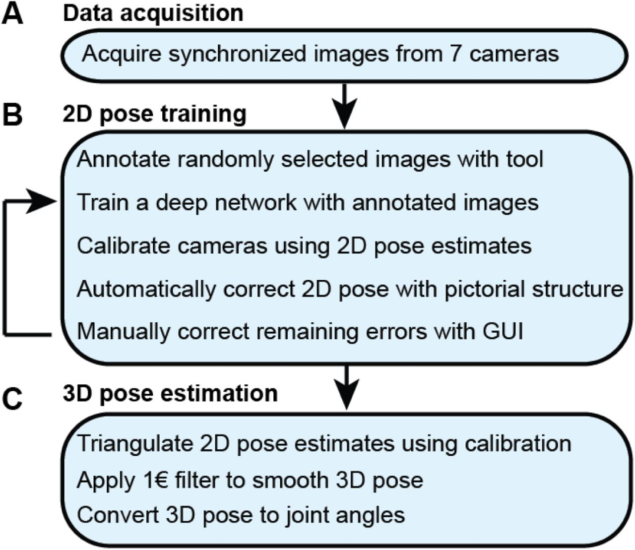 DeepFly3D: A deep learning-based approach for 3D limb and appendage