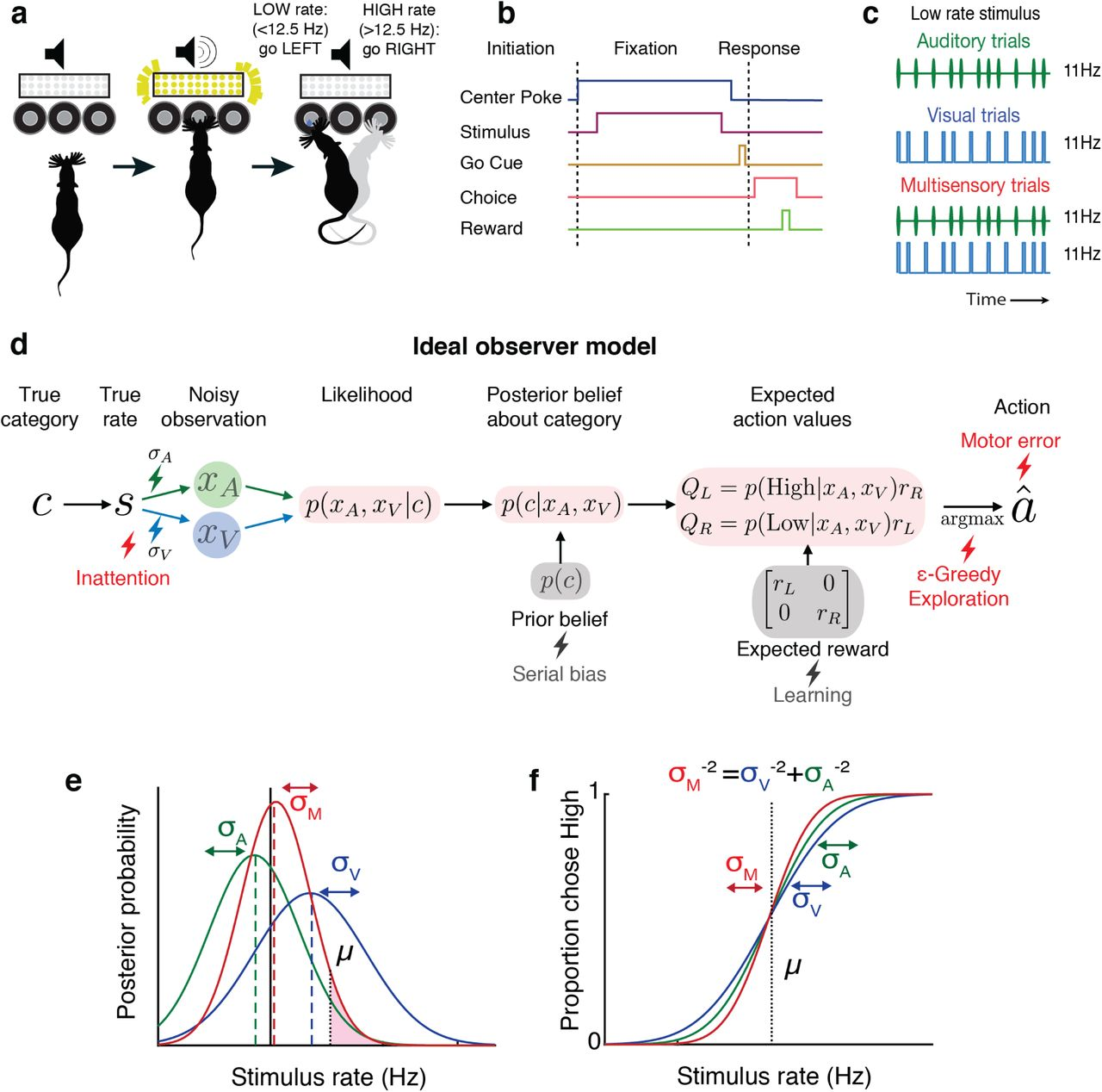 Lapses in perceptual decisions reflect exploration | bioRxiv on