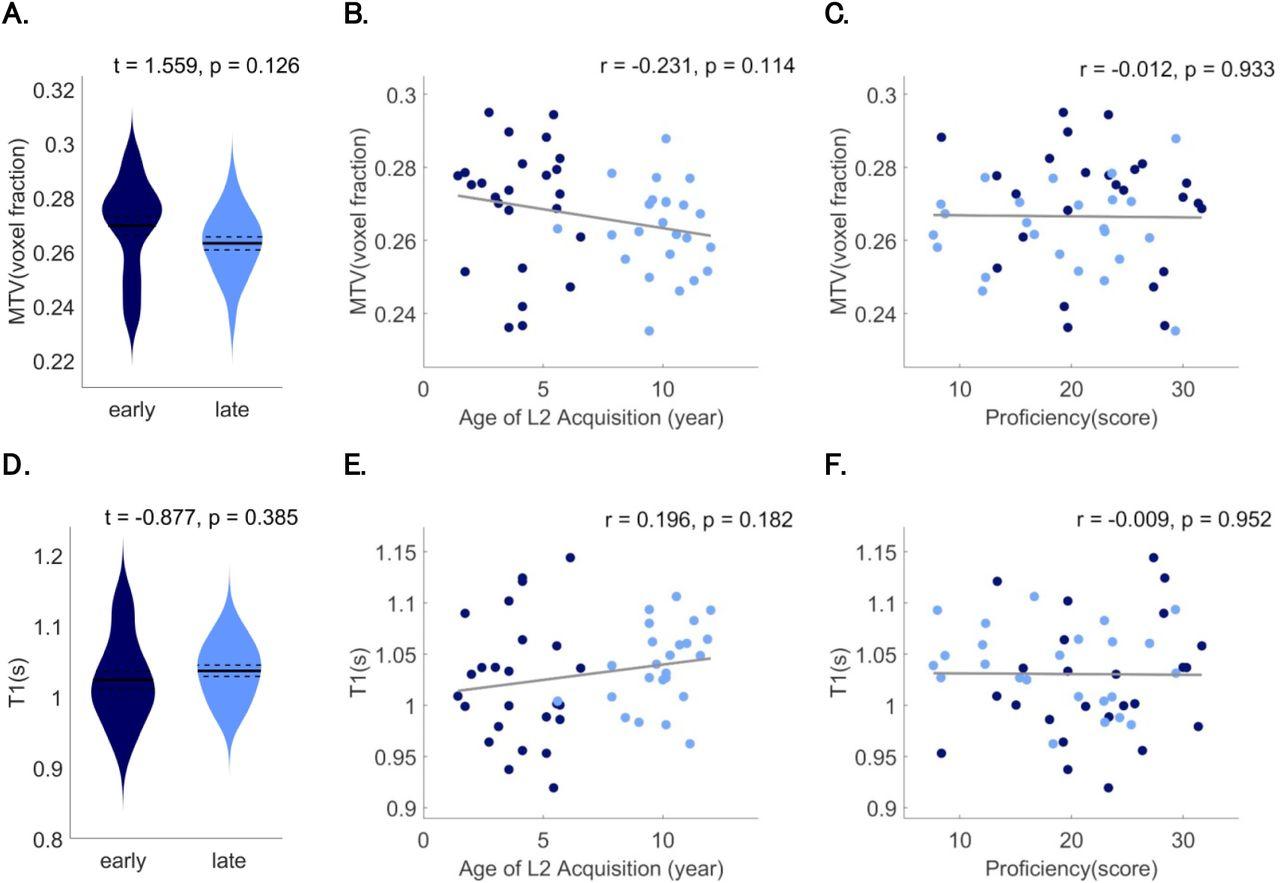 Microstructural plasticity in the bilingual brain | bioRxiv