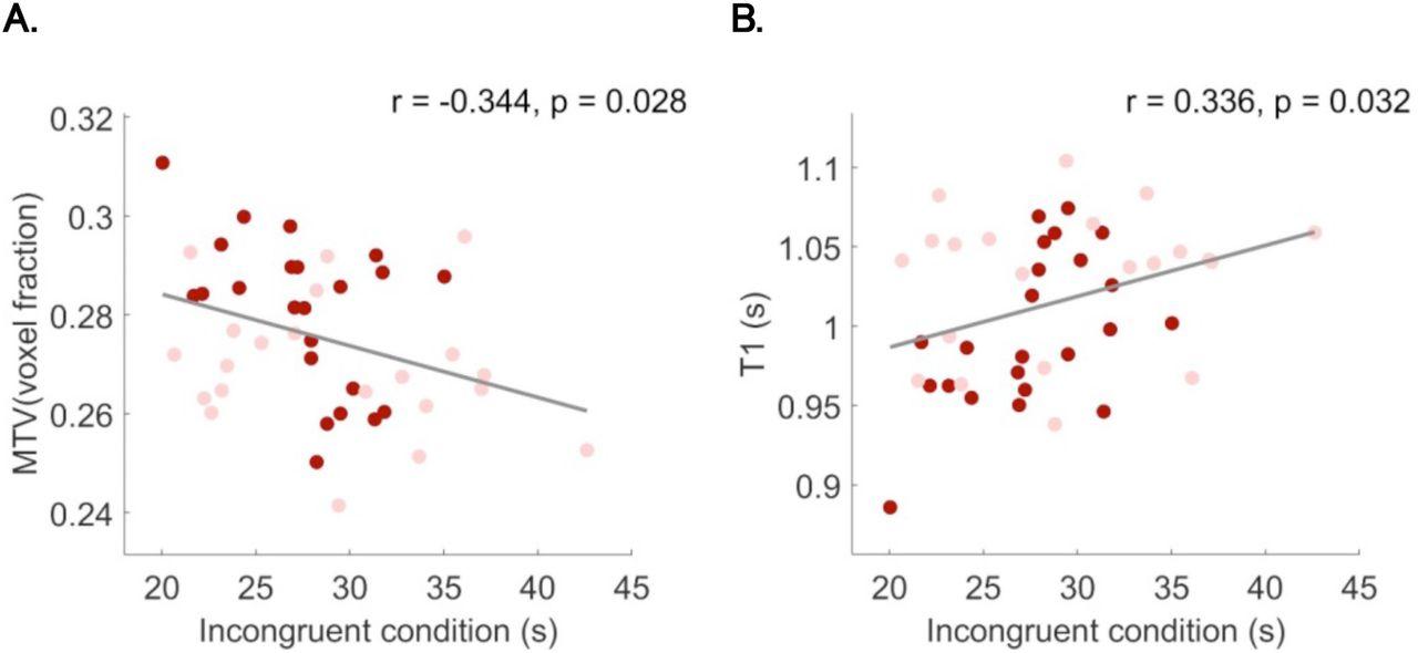 Microstructural plasticity in the bilingual brain   bioRxiv