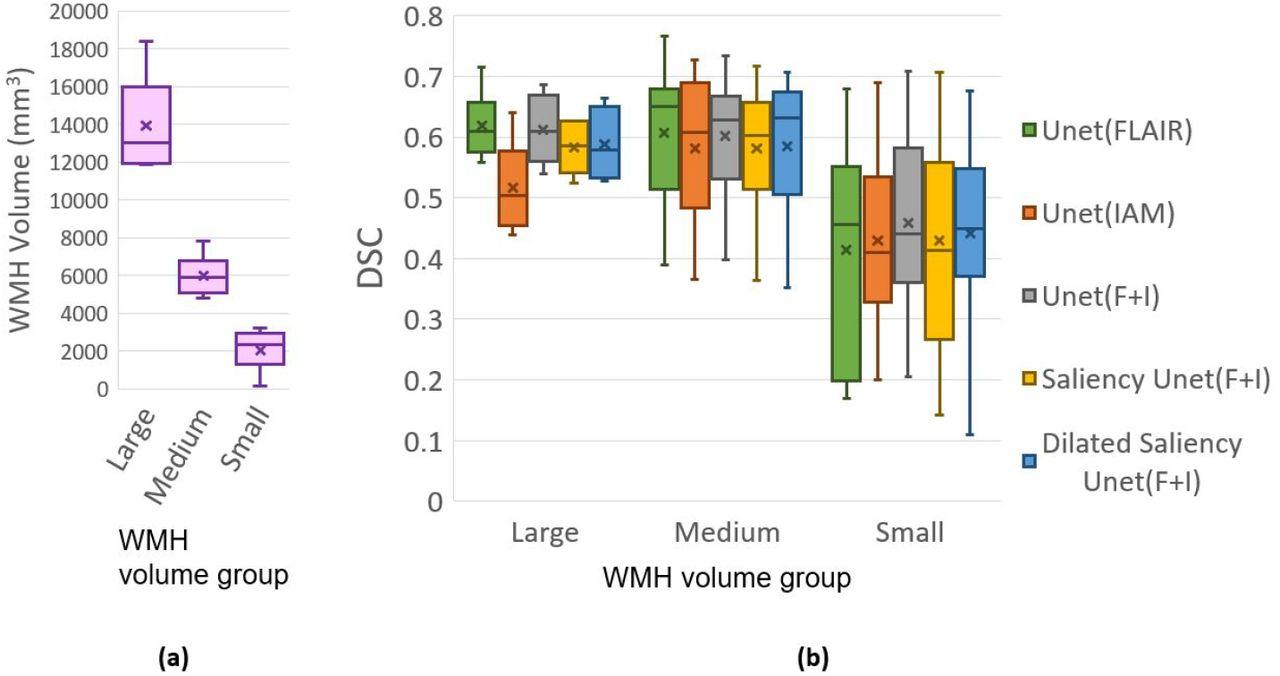 Dilated Saliency U-Net for White Matter Hyperintensities