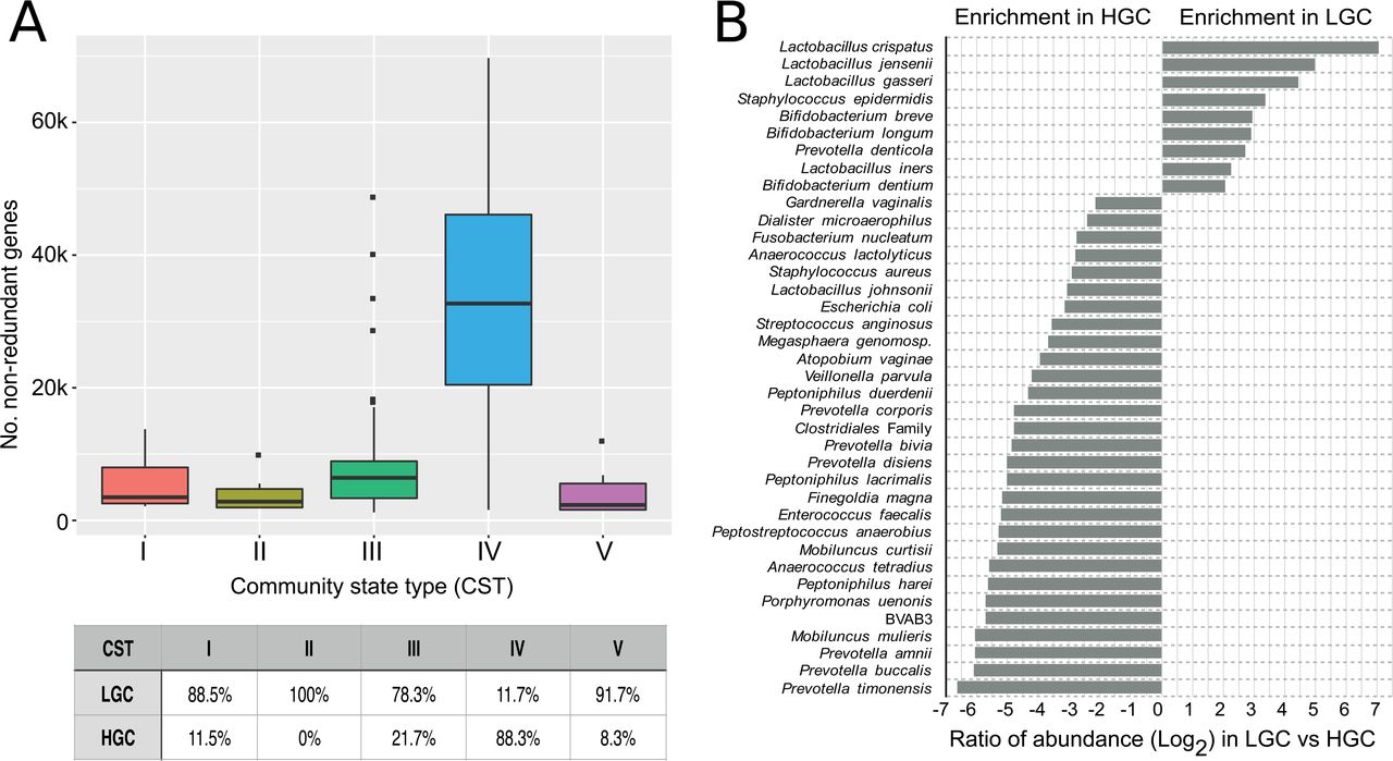 VIRGO, a comprehensive non-redundant gene catalog, reveals extensive
