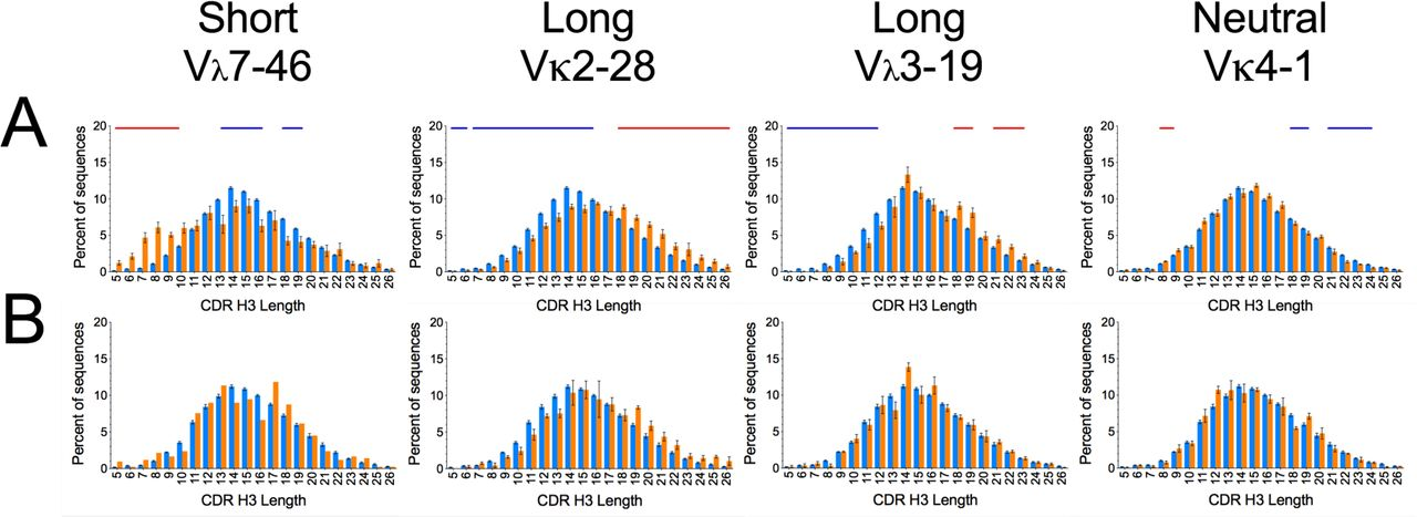 Heavy Chain CDR 3 and Junctional Length Biases in Human