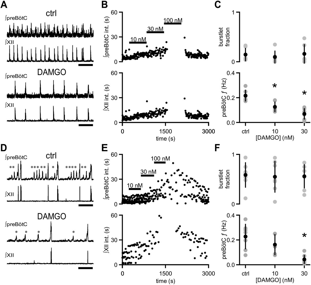 Inspiratory rhythmogenic activity is burst-independent and