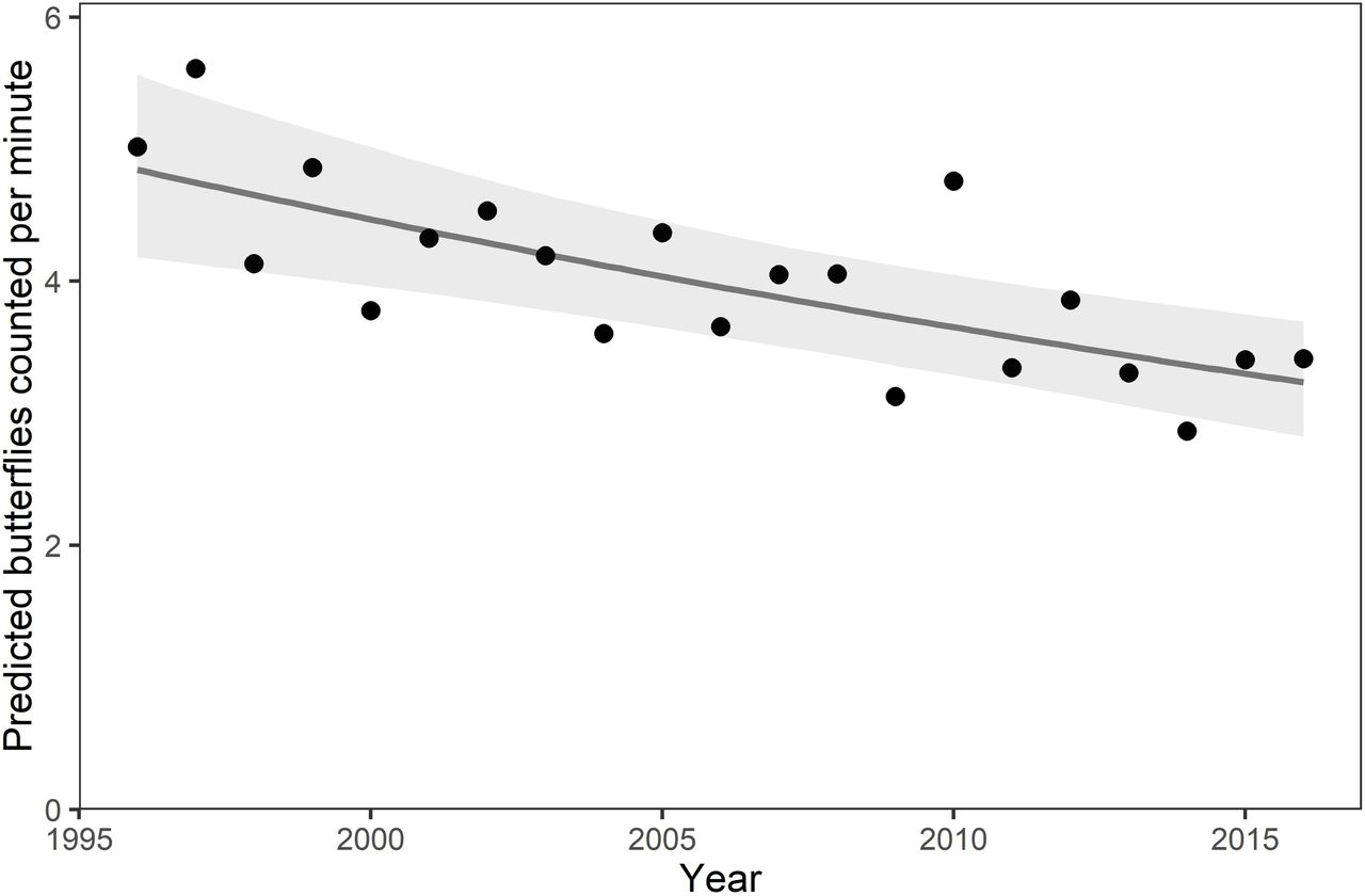 Butterfly abundance declines over 20 years of systematic