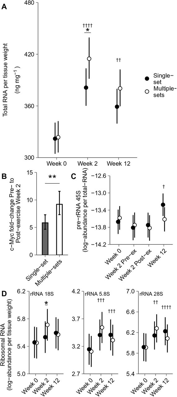 Benefits of higher resistance-training volume depends on