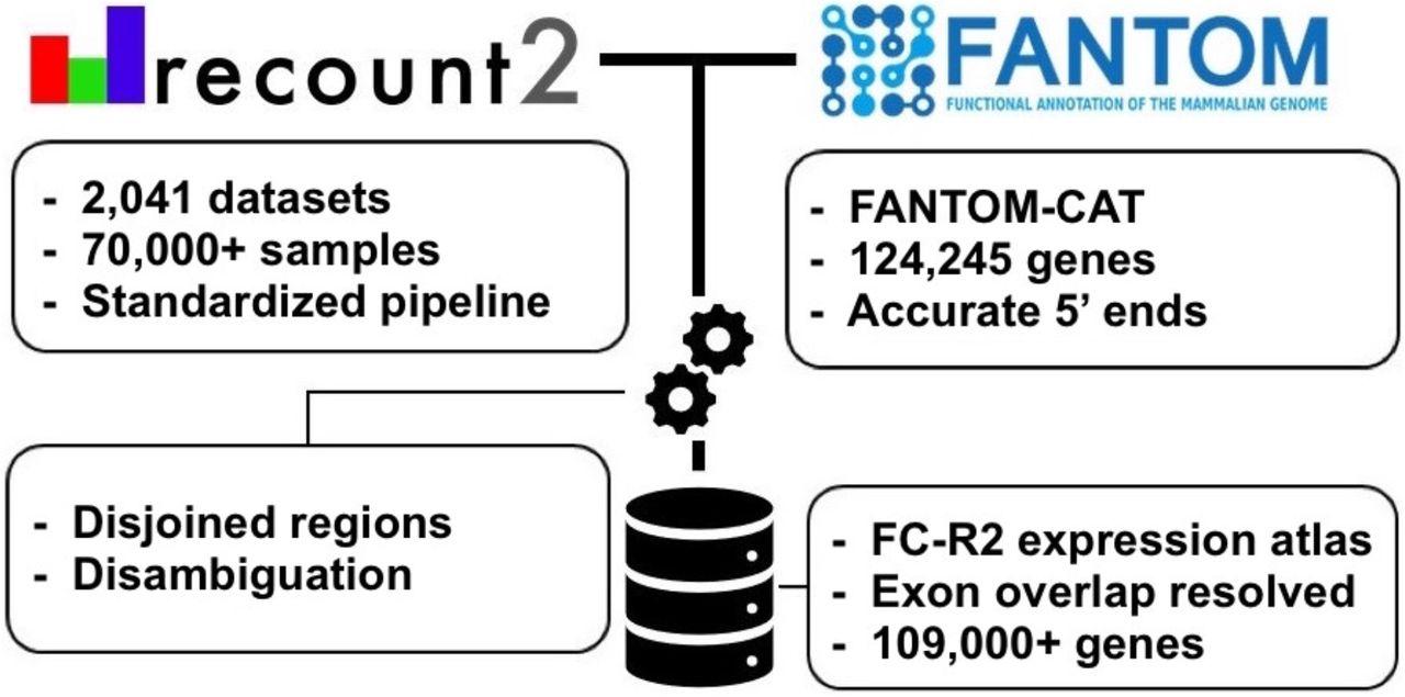 Recounting the FANTOM Cage Associated Transcriptome   bioRxiv
