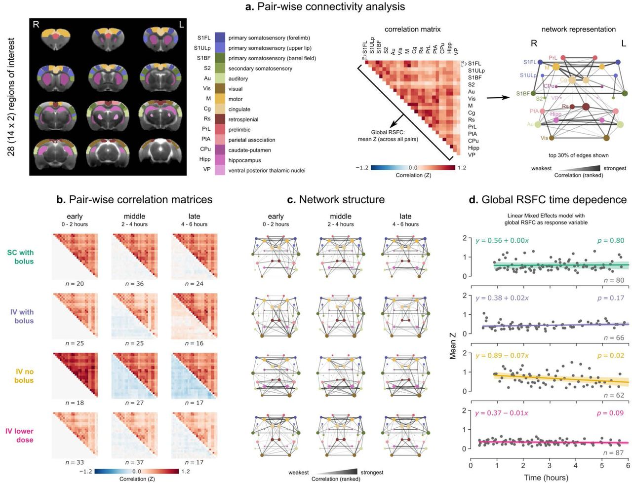 Temporal stability of fMRI in medetomidine-anesthetized rats