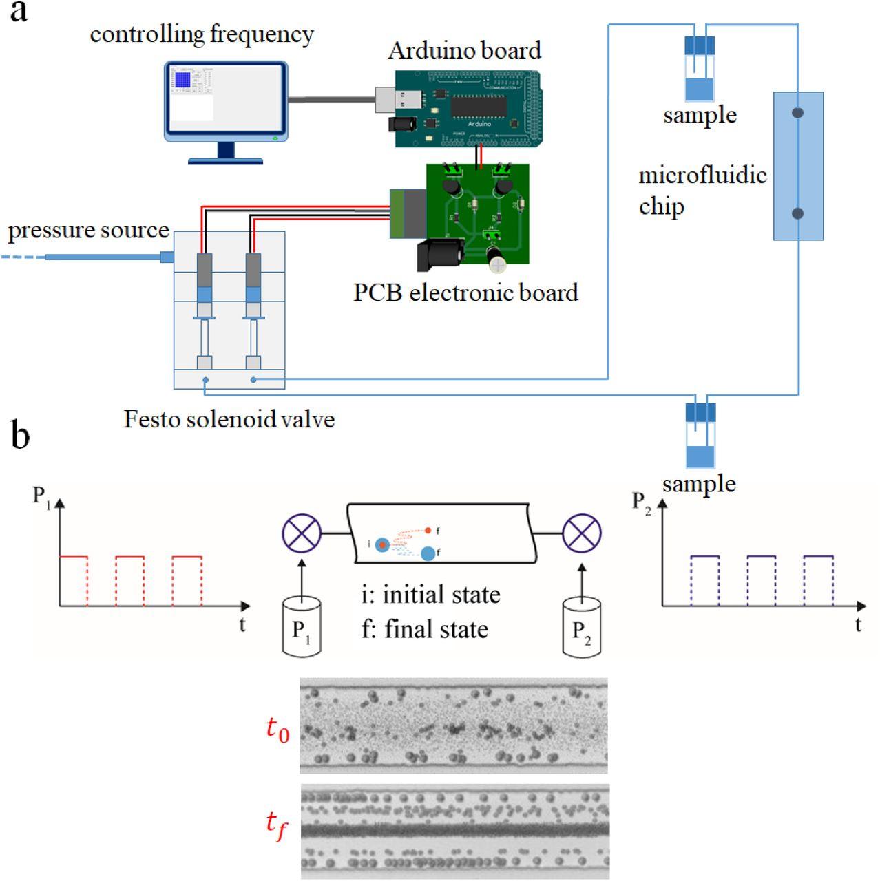 Oscillatory Viscoelastic Microfluidics for Efficient Focusing and ...