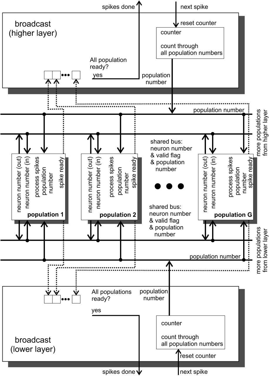 Massively Parallel FPGA Hardware for Spike-By-Spike Networks