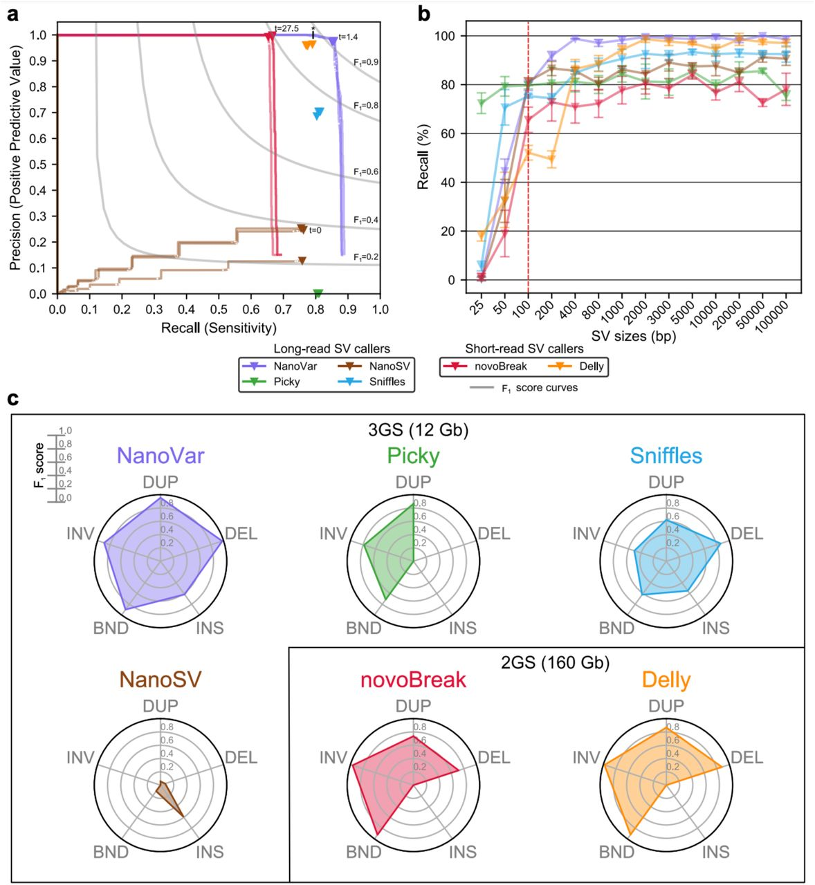 NanoVar: Accurate Characterization of Patients' Genomic Structural