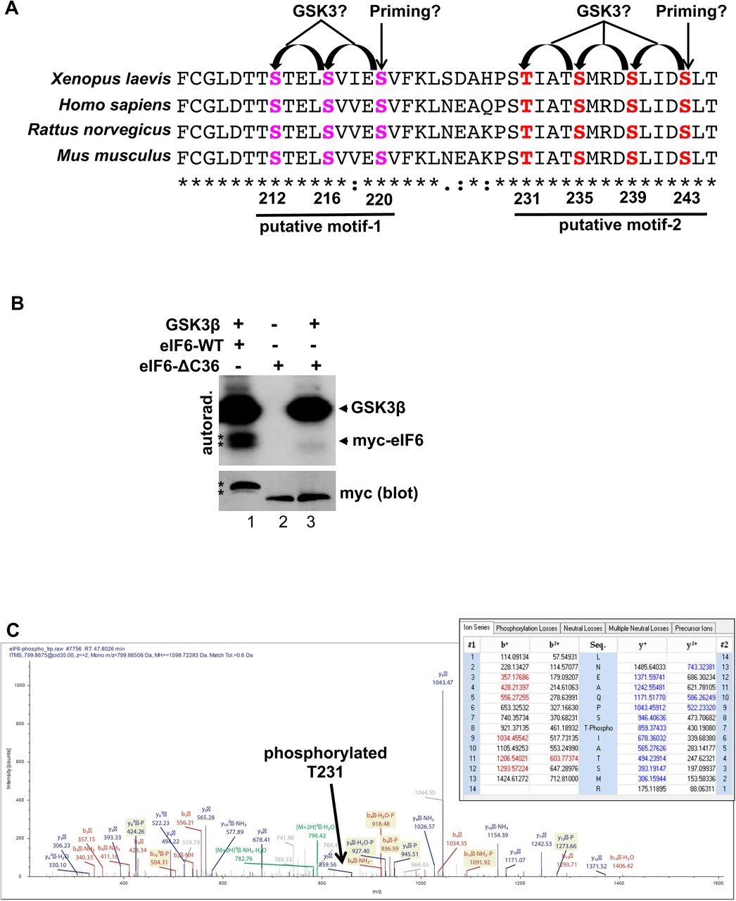 Regulation of eIF6 through multisite and sequential