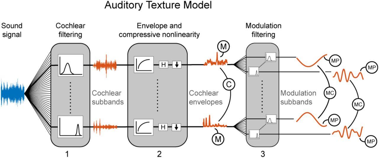 Illusory sound texture reveals multi-second statistical