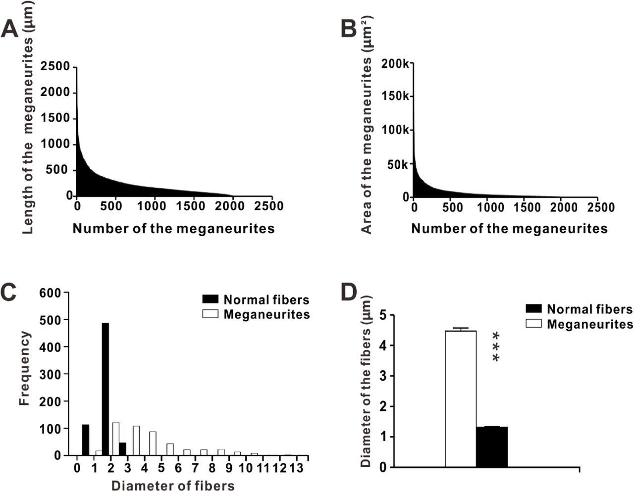 De novo aging-related megaloneurites: alteration of NADPH diaphorase