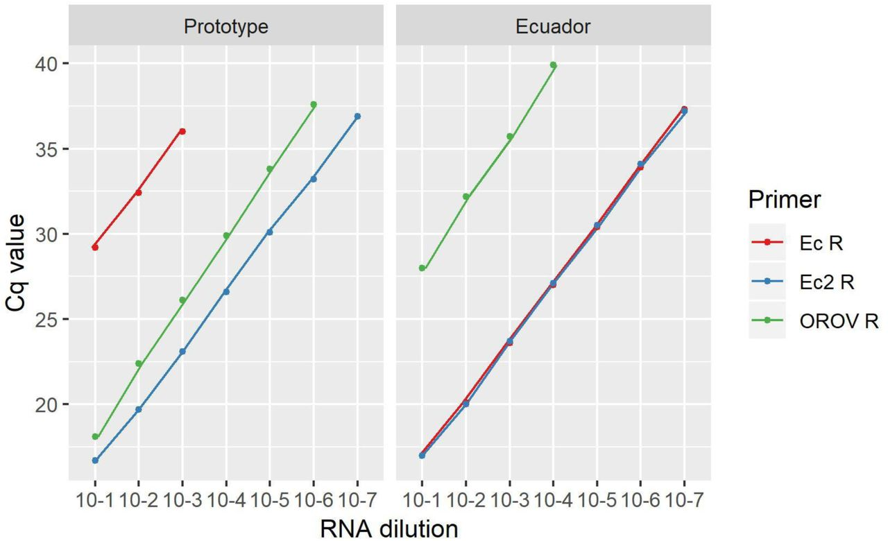 Sensitivity analysis of <t>three</t> reverse primers used in the <t>rRT-PCR</t> assay. Cq values are shown against a ten-fold serial dilution of OROV RNA, either from the prototype strain, or an Ecuadorian strain.