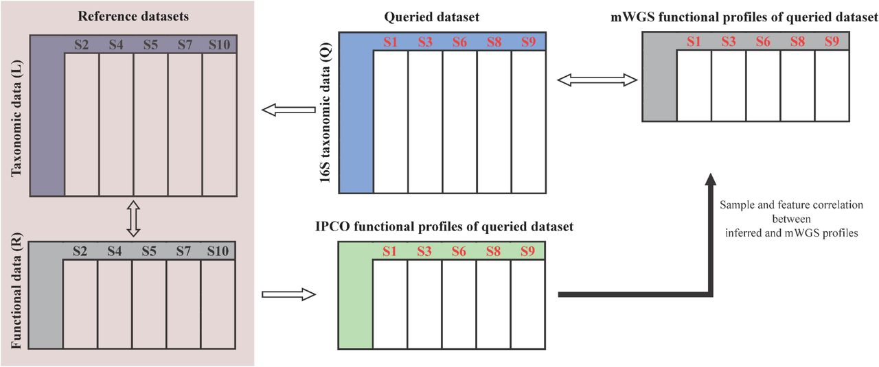 IPCO: Inference of Pathways from Co-variance analysis | bioRxiv