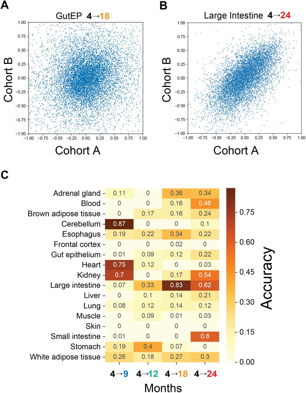 Aging is associated with a systemic length-driven transcriptome