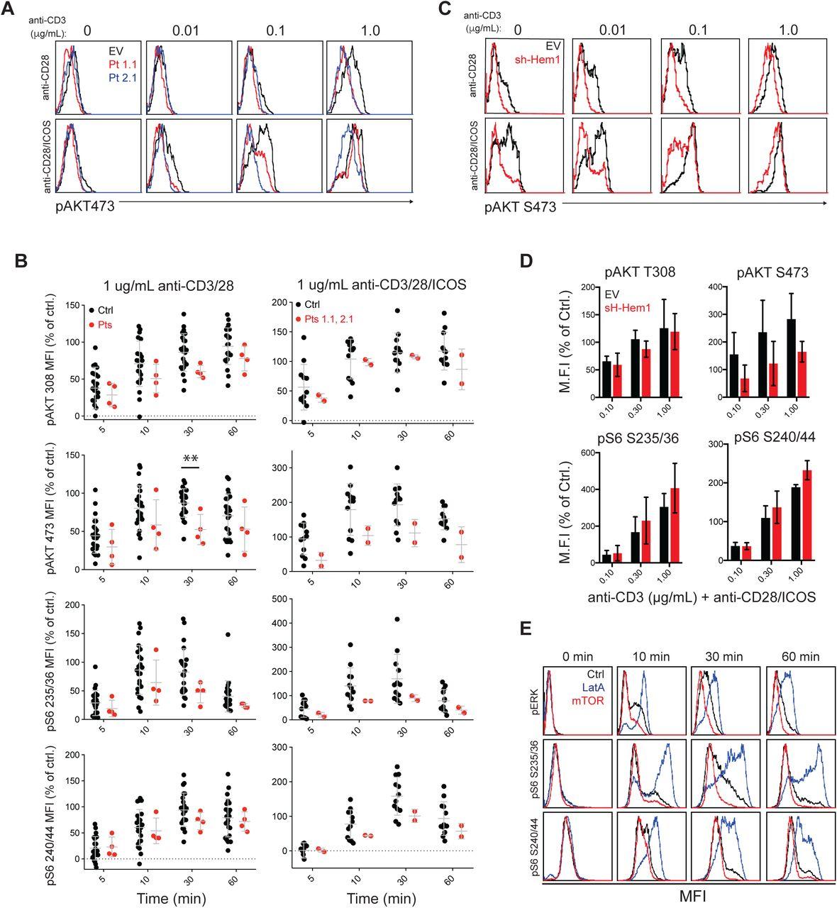 Genetic immunodeficiency and autoimmune disease reveal
