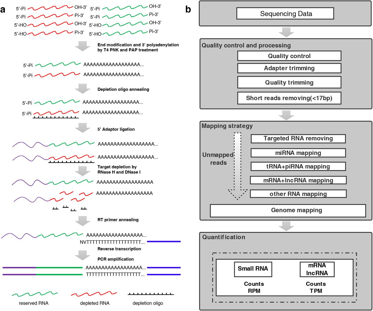 PALM-Seq: integrated sequencing of cell-free long RNA and
