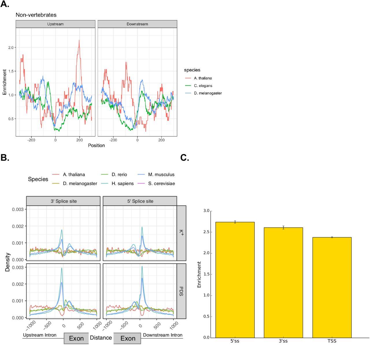 Alternative splicing modulation by G-quadruplexes | bioRxiv
