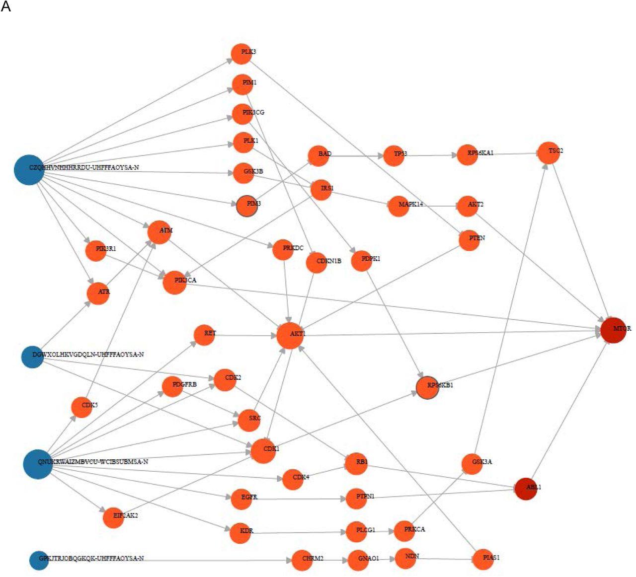 SmartGraph: A Network Pharmacology Investigation Platform