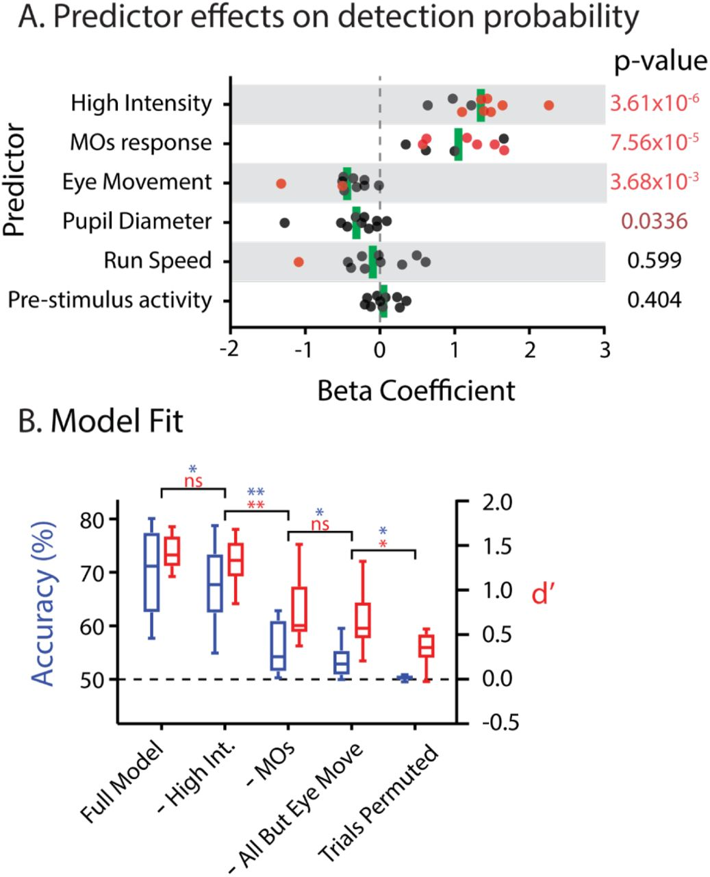 Movement and performance predict widespread cortical
