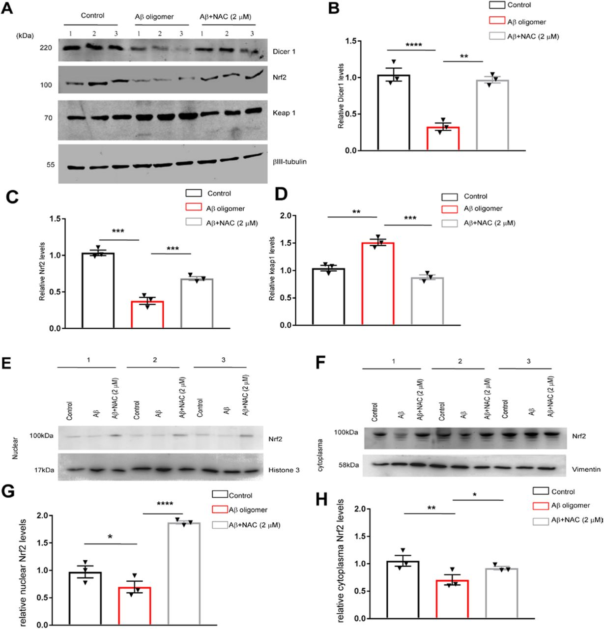 Dicer1 is reduced in APPswe/PSEN1dE9 mice and is regulated