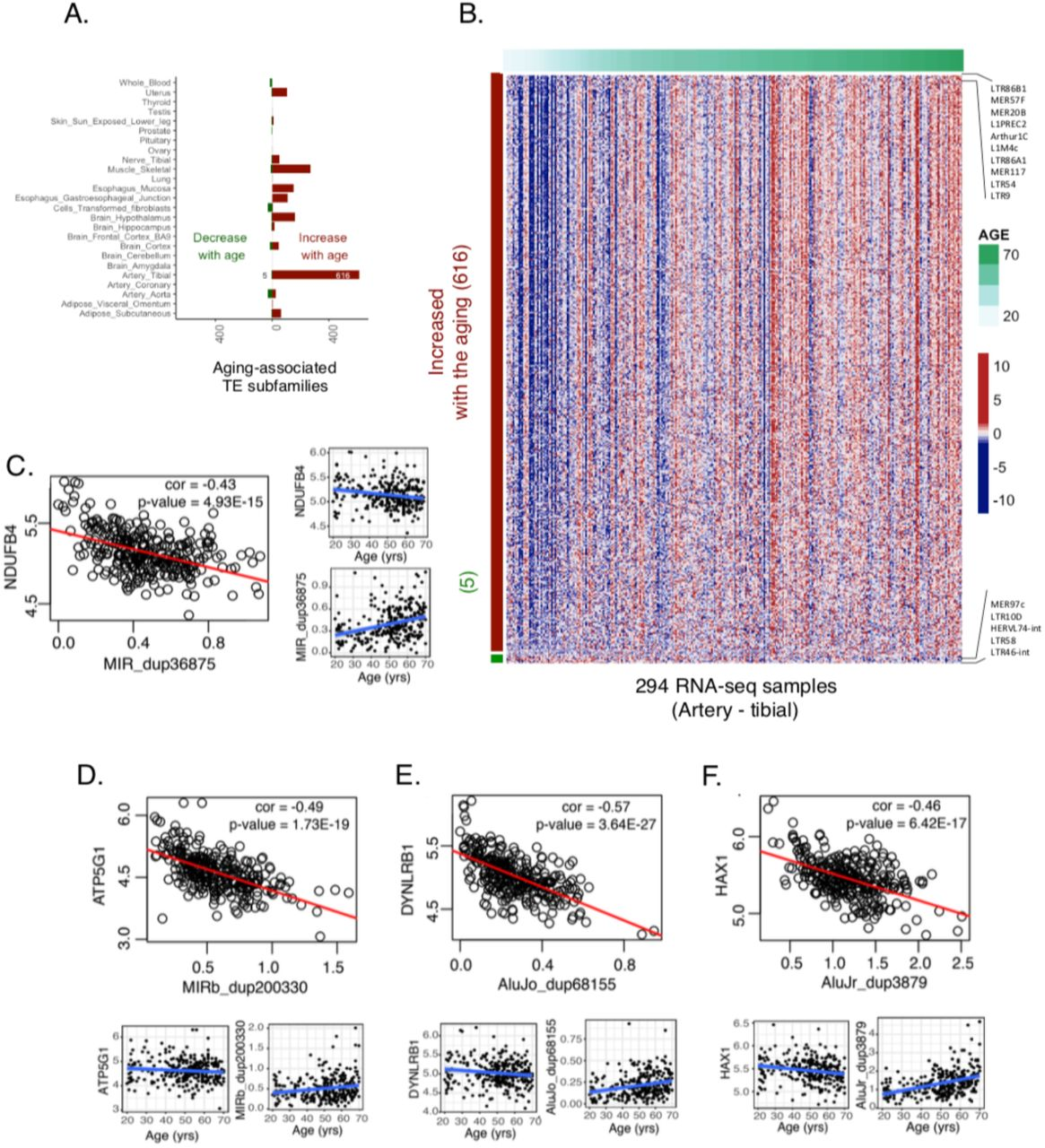 Atlas of transcriptionally active transposable elements in